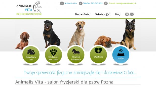 Darmowy Audyt Online Dla Strony Animalisvitapl Ocena 2 Seo Wynik 34
